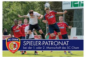 Spieler-Patronate Saison 2018/19